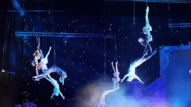 Купить билет в цирк тольятти 2017 сколько стоит билет в театр ермоловой