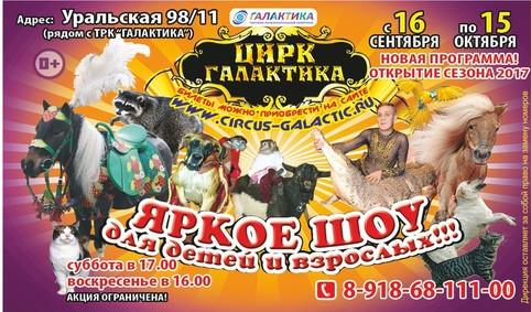 Цирк краснодара купить билет театр сказок на московском проспекте афиша