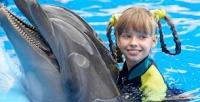 <b>Скидка до 50%.</b> Плавание сдельфинами втечение 5или 10минут вДжубгинском дельфинарии