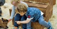 <b>Скидка до 50%.</b> Посещение контактного зоопарка «Зверополис» для взрослого или ребенка соскидкой50%