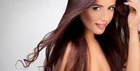 <b>Скидка до 60%.</b> Мужская или женская стрижка, окрашивание навыбор, укладка, мелирование, полировка, экранирование, ботокс волос либо коррекция иокрашивание бровей всалоне красоты «Студия стрижки»