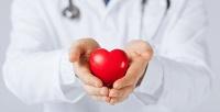 <b>Скидка до 50%.</b> Консультация кардиолога или кардиологическое обследование сЭКГ иУЗИ сердца вклинике «Ланкор Мед»