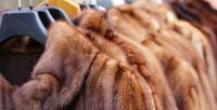 <b>Скидка до 50%.</b> Биочистка куртки, плаща, шубы или пальто откомпании «Мастер Кожамех»