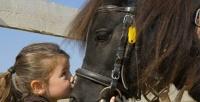 <b>Скидка до 61%.</b> Обучение верховой езде или конная прогулка сфотосессией отконнофехтовального клуба «Бретта»