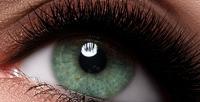 <b>Скидка до 81%.</b> Ламинирование ресниц потехнологии LVL, поресничное наращивание уголков глаз либо поресничное наращивание «Полный объём» или «3D-эффект» в«Салоне красоты иSPA»