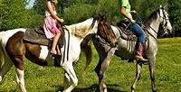 <b>Скидка до 50%.</b> Катание вкарете, семейная экскурсия, оздоровительная верховая езда, мастер-класс или верховая прогулка отконного дворика «Огонёк»