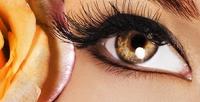 <b>Скидка до 66%.</b> Ламинирование, окрашивание иперманентный макияж бровей вкабинете Ксении Шадриной