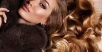 <b>Скидка до 51%.</b> Окрашивание ресниц, вечерний макияж иукладка, оформление иокрашивание бровей всалоне «Сияние»