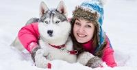 <b>Скидка до 84%.</b> Курсы дрессировки собак втечение 2, 6или 12месяцев отшколы Give MePaw