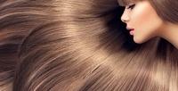 <b>Скидка до 82%.</b> Стрижка, 3-фазное ламинирование, кератиновое выпрямление, полировка волос, укладка отклуба красоты New York