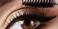 <b>Скидка до 70%.</b> Наращивание ресниц шелком или норкой, оформление бровей, макияж либо прическа всалоне красоты «Образ»