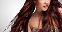 <b>Скидка до 70%.</b> Мужская или женская стрижка, коррекция бровей, оформление бороды, окрашивание, тонирование, мелирование, укладка волос, создание прикорневого объема всалоне красоты «Милена»