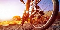 Прокат велосипедов на1и4часа или сутки от«ВелоПрокат52». <b>Скидкадо52%</b>