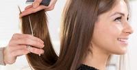 <b>Скидка до 78%.</b> Мужская иженская стрижка, укладка, окрашивание, биозавивка, кератиновое восстановление, талассотерапия, SPA-уход или ботокс для волос всалоне красоты Vogue