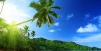 <b>Скидка до 35%.</b> Тур наСейшельские острова сотдыхом вотеле ипитанием виюне ииюле соскидкой35%