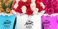 Букет изголландских роз или тюльпанов вцветочном салоне White Rabbit. <b>Скидкадо55%</b>