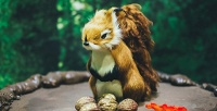 Выставка восковых фигур счаепитием имастер-классом скомпанией «Сказочный Лес». <b>Скидка50%</b>