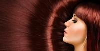 <b>Скидка до 77%.</b> Стрижка, окрашивание ипроцедуры поуходу заволосами всалоне красоты Vobraze