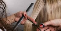 <b>Скидка до 54%.</b> Женская, мужская стрижка, ламинирование, окрашивание, выпрямление, завивка всалоне красоты «Эдель»