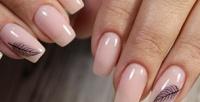 <b>Скидка до 60%.</b> Аппаратный маникюр ипедикюр спокрытием идизайном двух ногтей встудии красоты Beautylilab