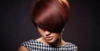 <b>Скидка до 67%.</b> Женская стрижка, укладка, окрашивание втехнике шатуш или омбре, восстановление волос всалоне красоты Nika