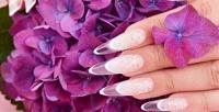 <b>Скидка до 67%.</b> Маникюр ипедикюр спокрытием ногтей гель-лаком всалоне красоты Nika