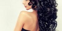 <b>Скидка до 55%.</b> Мужская или женская стрижка, уход для волос, окрашивание навыбор всалоне красоты «Ириска»