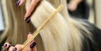 <b>Скидка до 61%.</b> Детская, мужская или женская стрижка, укладка, полировка, окрашивание, экранирование, восстановление волос в«N-студии»