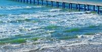 <b>Скидка до 46%.</b> Отдых вАнапе напобережье Черного моря вномере навыбор спитанием «полный пансион» или завтраками, пользованием мангалом вотеле «Черноморочка»