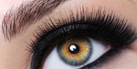 <b>Скидка до 70%.</b> Оформление, коррекция иокрашивание бровей навыбор всалоне Beauty Studio byLina_mik