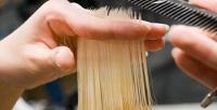 <b>Скидка до 75%.</b> Окрашивание Airtouch, полировка, экранирование, стрижка или SPA-уход для волос всалоне красоты Crown