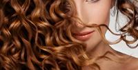 <b>Скидка до 73%.</b> Мужская или женская стрижка, укладка, окрашивание, мелирование, SPA-программа, термокератиновое восстановление, экранирование, ламинирование, кератиновое выпрямление волос всалоне-парикмахерской Egoist&ka