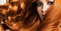 <b>Скидка до 74%.</b> Мужская или женская стрижка или окрашивание волос всалоне красоты Santini