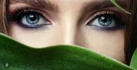 <b>Скидка до 75%.</b> Наращивание ресниц, ламинирование, окрашивание ресниц ибровей, коррекция бровей встудии красоты «Шкаф»