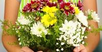 <b>Скидка до 50%.</b> Дизайнерский ящик ссезонными цветами, букет изполевых цветов вдизайнерской коробке, коробки сосладостями ицветами или букет-комплимент