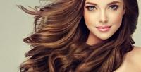<b>Скидка до 65%.</b> Женская стрижка, окрашивание, биозавивка, плазмотерапия, биксипластия, нанесение маски, кератиновое выпрямление иботокс для волос всалоне «Подружки»