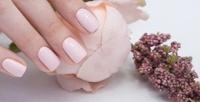 <b>Скидка до 70%.</b> Комбинированный маникюр ипедикюр спокрытием или без либо наращивание ногтей в«Студии красоты»
