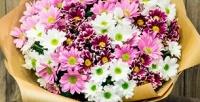 <b>Скидка до 50%.</b> Букет изкустовых хризантем или композиция-комплимент изсезонных цветов итрав