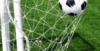 <b>Скидка до 50%.</b> Посещение 8или 12занятий вшколе вратарей либо абонемент назанятия футболом для детей вфутбольном клубе «Голстар»