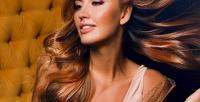 <b>Скидка до 73%.</b> Мужская, детская или женская стрижка, окрашивание либо лечение волос всалоне красоты «Монако»