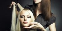 <b>Скидка до 78%.</b> Женская стрижка, окрашивание навыбор, кератиновое выпрямление, биоламинирование, ботокс, прикорневой объем, SPA-восстановление волос встудии красоты «Светлана»