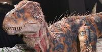 <b>Скидка до 50%.</b> Билет для детей или взрослых напредставление «Динозавр-шоу»