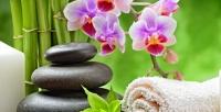 <b>Скидка до 55%.</b> SPA-программа всалоне тайского массажа Thai House SPA