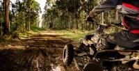 <b>Скидка до 55%.</b> 20-минутный заезд наквадроцикле сарендой беседки имангала или без откомпании S.T.A.L.K.E.R