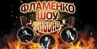 Билет нашоу «Фламенко» насцене «Мюзик-Холла» соскидкой50%