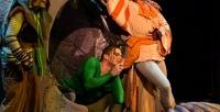 Билет наспектакль «Мэри Поппинс— Next» или «Шантеклер» от«Театра Луны» соскидкой50%