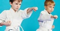 <b>Скидка до 60%.</b> 8, 12или 24занятия боевыми единоборствами для детей вшколе олимпийского карате WKF