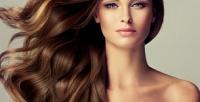 <b>Скидка до 75%.</b> Женская стрижка, окрашивание, полировка волос, мелирование или ламинирование всалоне-парикмахерской Beauty Club