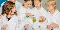 <b>Скидка до 66%.</b> До8занятий вклубе юных химиков «Фарадей»