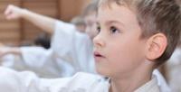<b>Скидка до 54%.</b> 1, 2или 3месяца занятий самбо или дзюдо для детей ивзрослых навыбор в«Академии Самбо»